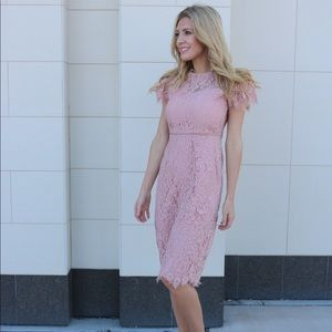 Maggy London rose pink lace dress